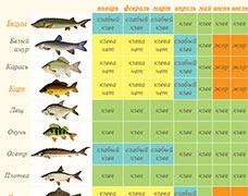 Как правильно приготовить перловку для рыбалки.