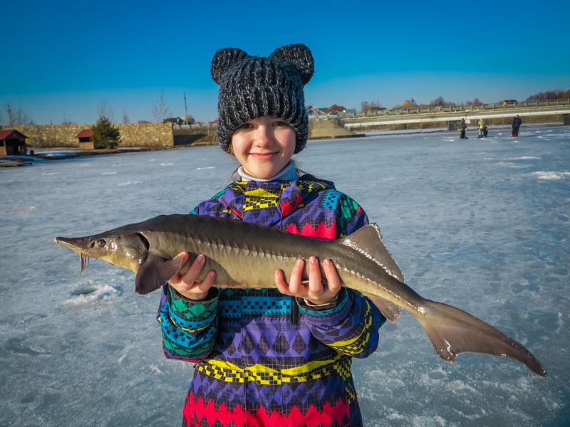 Зимняя рыбалка на стерлядь