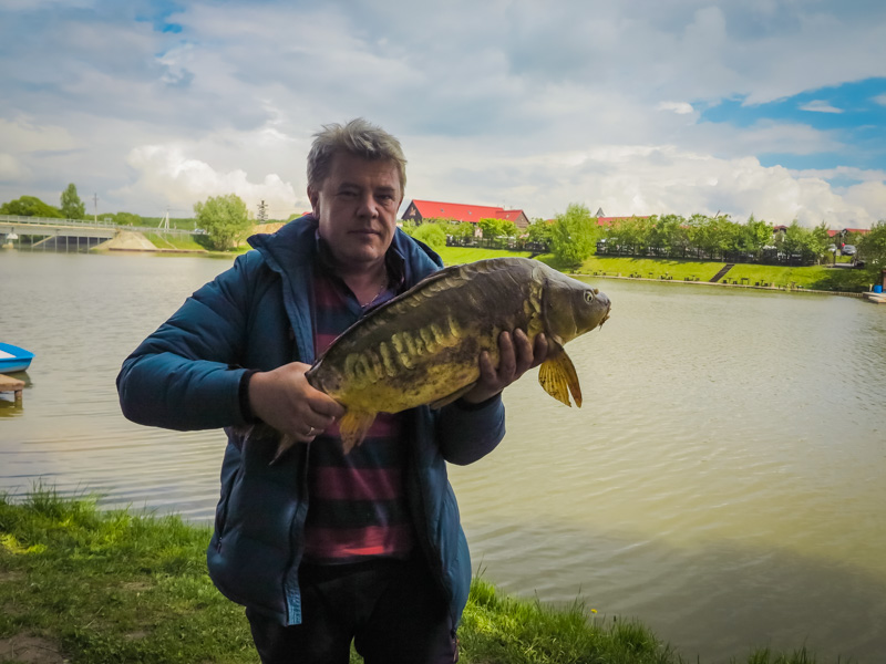 золотой сазан рыбалка фото