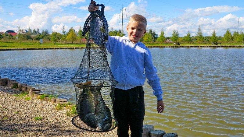 рыболовного хозяйства золотой сазан