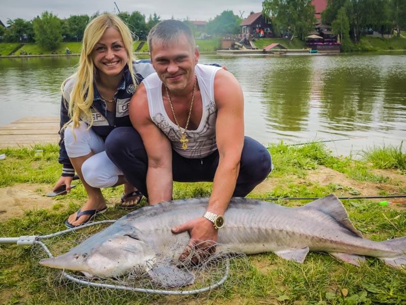 золотой сазан рыбалка официальный