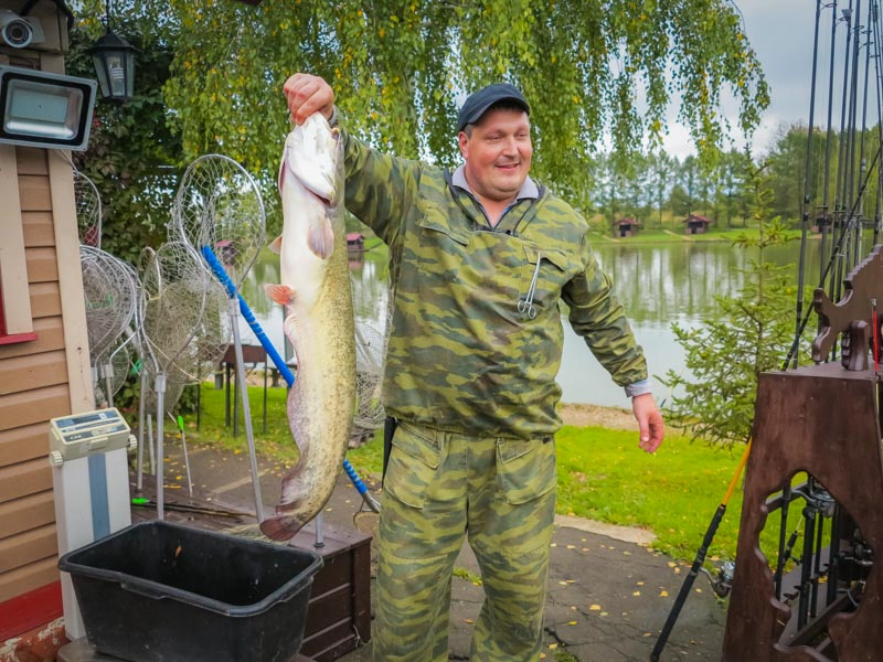 Золотой Сазан, рыболовный клуб