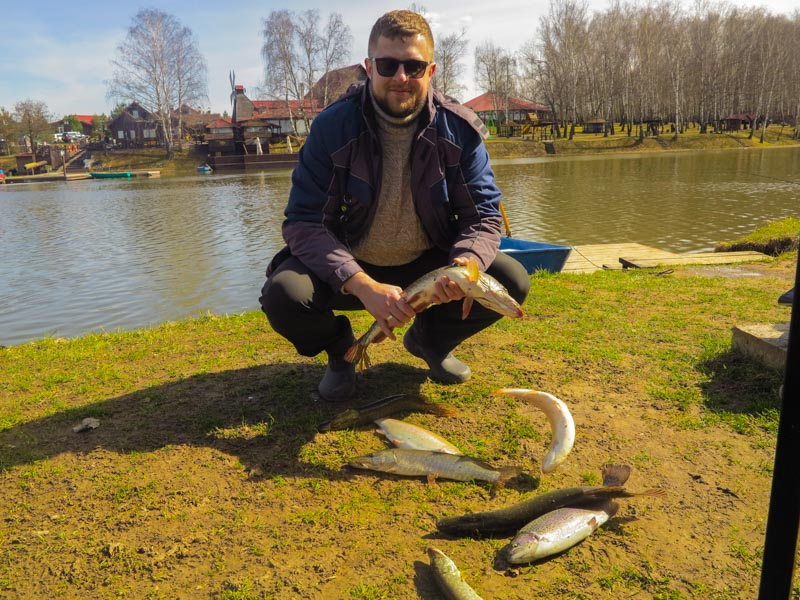 Золотой сазан рыбалка на калужском